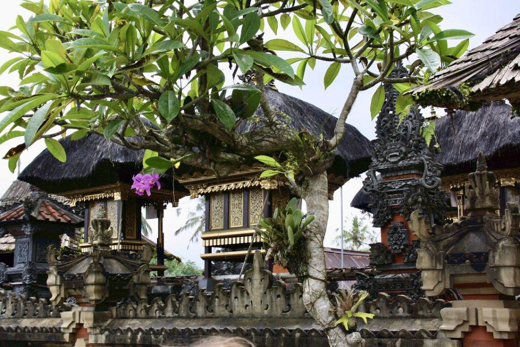 Le case tradizionali di Bali