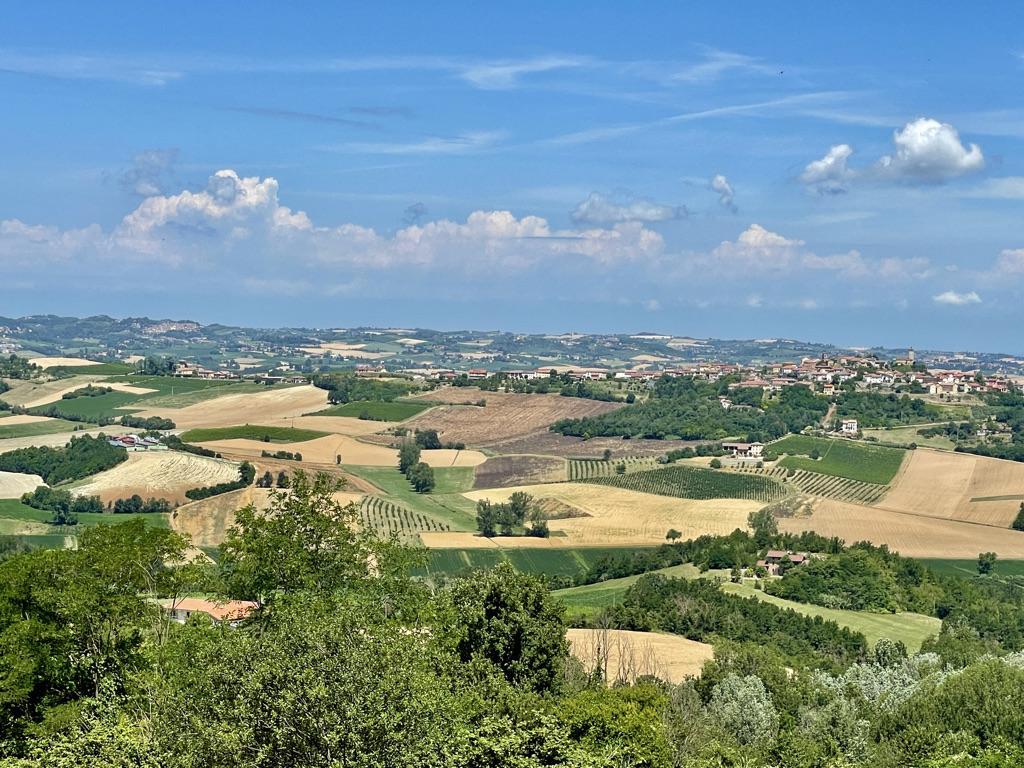 Monferrato Lavanda e Big Bench in Monferrato